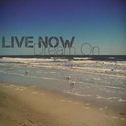 live-now-dream-on-nicole-mcinnes