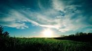 Green-Grass-Sky-Desktop-Background