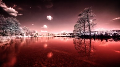 Bloody-Winter-River
