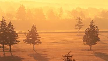 Cold-Sunny-Landscape