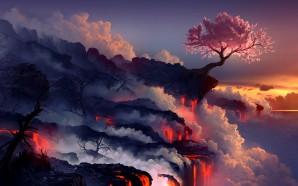 Daniel-Conway-Cherry-Tree