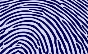 Finger-Print-Wallpaper