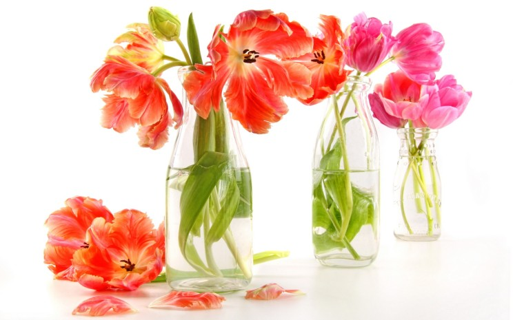 Flowers-Watter-Bottles