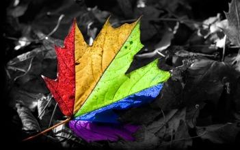 techno leaf