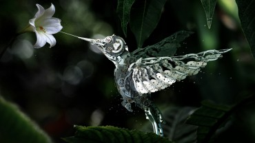 Mechanical-Hummingbird-hd-desktop-background