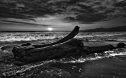 Monotone-Ocean-Shore