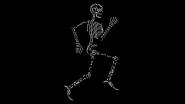 Skeleton-With-Bone-Names-wallpaper