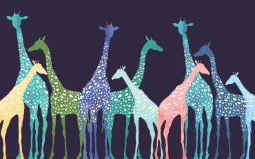 Color Giraffe