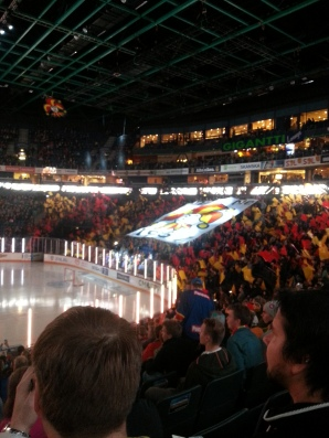 2014-11-04 Jokerit 1 and Metallurg Magnitogorsk 4
