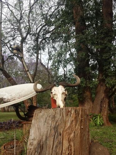 Kenya trip