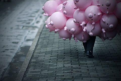 pig-baloons-pink-street