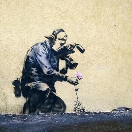 bansky-art-flowers-attacked