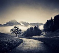 road-to-black-white-mountains