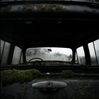 back-seat-passanger