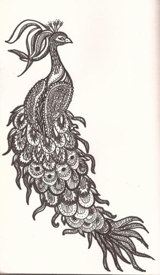 peacock-doodle