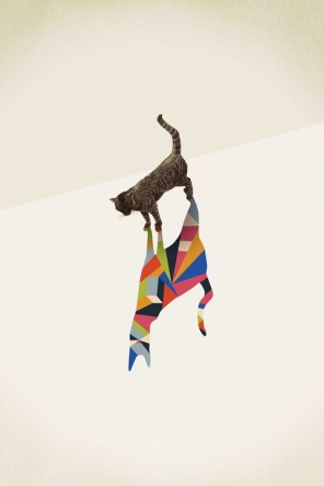 colour-sahdow-cat