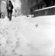 black-white-snow-street