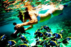 colours-underwater-photography