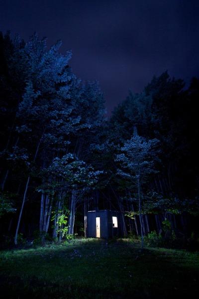 blues-woods-cabin