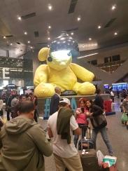 Doha Bear