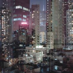jungle-city