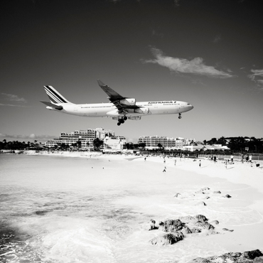 flight-or-flight
