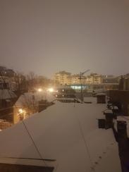 Beo Snow