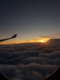 Flight by flight. Sunset