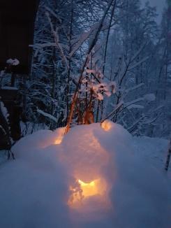 Winter Cottage -FI